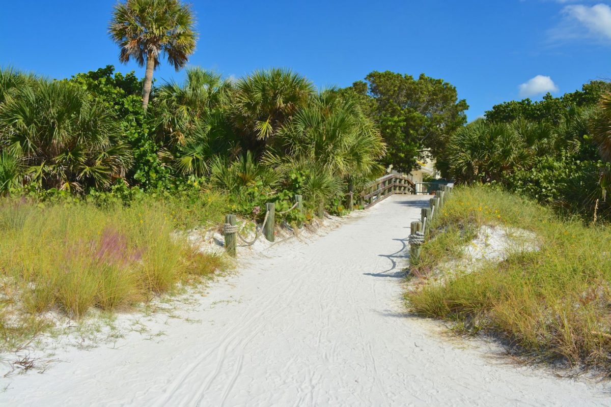 pathway to the beach in siesta key